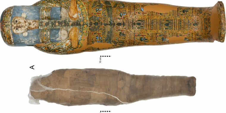 Technology Ancient embalmers used mud to hold a damaged mummy together