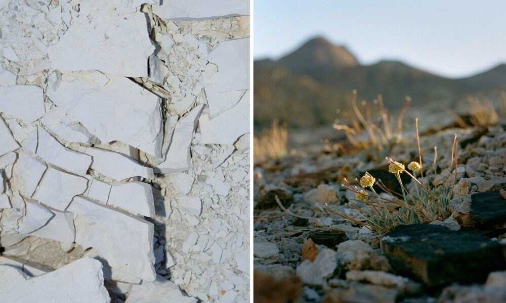 Cryptocurrency  Bitcoin The Lithium Mine Versus the Wildflower